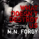What Doesn't Destroy Us, M. N. Forgy