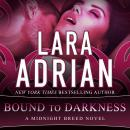 Bound to Darkness, Lara Adrian