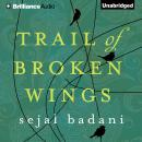 Trail of Broken Wings, Sejal Badani
