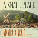 A Small Place Audiobook