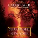 Surrender, New York: A Novel