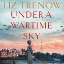 Under a Wartime Sky Audiobook