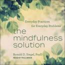 Mindfulness Solution: Everyday Practices for Everyday Problems, Ronald D. Siegel