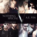 Nothing Special V Audiobook