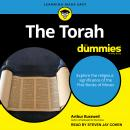 The Torah For Dummies Audiobook