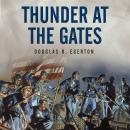 Thunder at the Gates: The Black Civil War Regiments that Redeemed America, Douglas R. Egerton