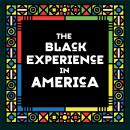 Black Experience in America (18th-20th Century), Various