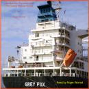 Slow 'Grey Fox' Jumps Over The QueaZy Package Tourists. Book One., Roger Worrod