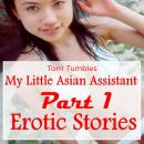 My Little Asian Assistant Part 1 Erotic Stories, Torri Tumbles