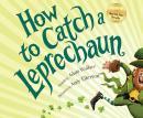 How To Catch a Leprechaun Audiobook