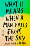 What It Means When a Man Falls from the Sky: Stories, Lesley Nneka Arimah