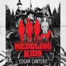 Meddling Kids Audiobook