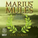 Marius' Mules IV: Conspiracy of Eagles: Marius' Mules: Book 4, S. J. A. Turney