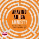 Amnesty Audiobook