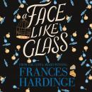 A Face Like Glass Audiobook