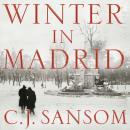 Winter in Madrid Audiobook