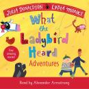 What the Ladybird Heard Adventures Audiobook