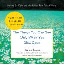 The Things You Can See Only When You Slow Down : How to Be Calm and Mindful in a Fast-Paced World Audiobook