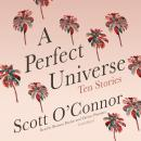 A Perfect Universe: Ten Stories Audiobook