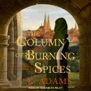 The Column of Burning Spices: A Novel of Germany's First Female Physician Audiobook
