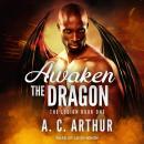 Awaken the Dragon Audiobook