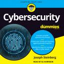 Cybersecurity For Dummies Audiobook