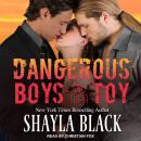 Dangerous Boys and their Toy Audiobook