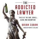 Addicted Lawyer: Tales of the Bar, Booze, Blow, and Redemption, Brian Cuban