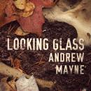Looking Glass Audiobook