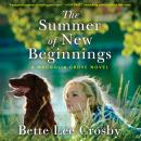 The Summer of New Beginnings Audiobook