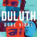 Duluth: A Novel Audiobook