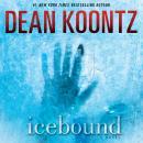 Icebound: A Novel Audiobook