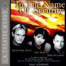 In the Name of Security Audiobook
