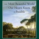 More Beautiful World Our Hearts Know Is Possible, Charles Eisenstein