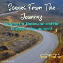 Scenes From The Journey, Ann Tudor