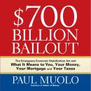 $700 Billion Bailout: The Emergency Economic Stabilization Act and What It Means to You, Your Money, Your Mortgage and Your Taxes, Paul Muolo