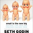 Small Is the New Big: And Other Riffs, Rants, and Remarkable Business Ideas, Seth Godin