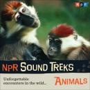 NPR Sound Treks: Animals: Unforgettable Encounters in the Wild, NPR