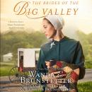 Brides of the Big Valley: 3 Romances from a Unique Pennsylvania Amish Community, Wanda E Brunstetter, Richelle Brunstetter, Jean Brunstetter
