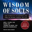 Wisdom of Souls: Case Studies of Life Between Lives From The Michael Newton Institute Audiobook