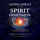 Living Souls in the Spirit Dimension: The Afterlife and Transdimensional Reality, Chris H. Hardy