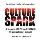Culture Spark: 5 Steps to Ignite and Sustain Organizational Growth Audiobook