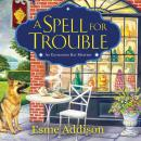 A Spell for Trouble: An Enchanted Bay Mystery Audiobook