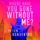 Where Have You Gone Without Me Audiobook