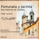 Fortunata y Jacinta, parte tercera Audiobook