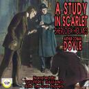 A Study In Scarlet Sherlock Holmes Audiobook