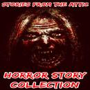 Horror Story Collection Audiobook