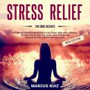 Stress Relief: This Book Includes: HEALING MEDITATION Mindfulness & Kundalini, REIKI AND CHAKRAS. Th Audiobook