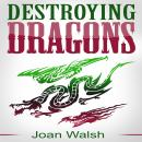 Destroying Dragons Audiobook