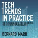 Tech Trends in Practice: The 25 Technologies that are Driving the 4th Industrial Revolution Audiobook